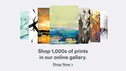 Shop 1,000s of prints in our online gallery.